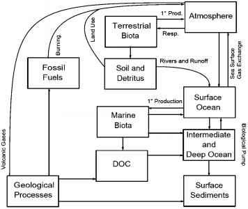 Dust Ocean Carbon Cycle