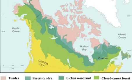 Canada Vegetation Map