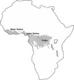 Rainforests In Africa Map.Wet Ever Green Forest In Ghana Evergreen Forest