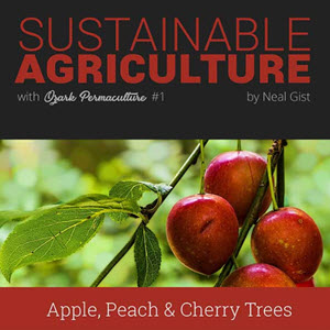 Sustainable Agriculture with Ozark Permaculture