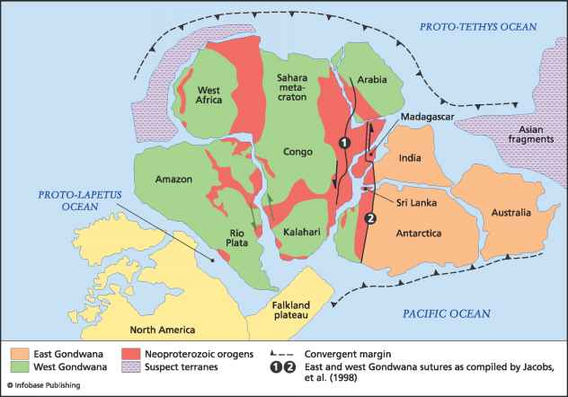 Amazon River Gondwana Supercontinent