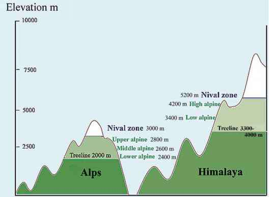 Comparison Alps Himalaya