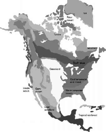 Biome During Last Glacial Maximum