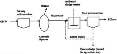 Factors Affecting Anaerobic Process Operation - Industrial Wastes