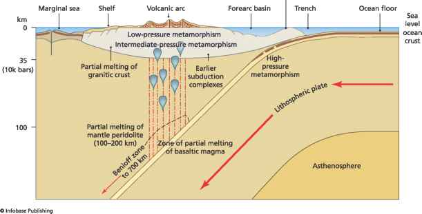 Metamorphism and tectonics plate tectonics climate policy watcher relationship between metamorphism and tectonics in a convergent margin setting sciox Images