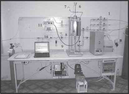 Laboratory Scale Fixed Bed Reactor